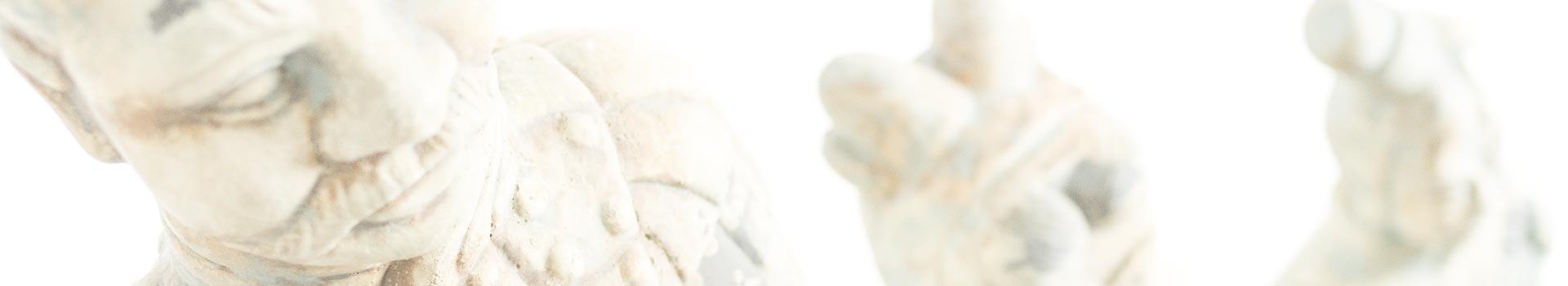 qipong holistische therapie spijkenisse lutte