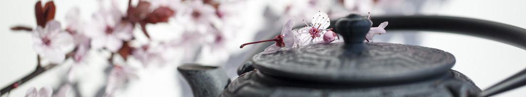 qipong holistische energetische therapie spijkenisse lutte
